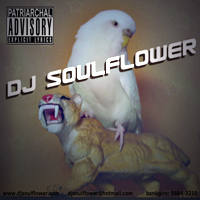 DJ Soulflowers CD - 2006